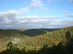 A scenic overlook at Lost Maples State Park.