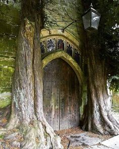 Ancient yew trees at the north porch of to St Edward's Church Church Architecture, Ancient Architecture, Wooden Door Design, Wooden Doors, Sorrento, Amalfi, Prague, Medieval Door, Woodworking Enthusiasts