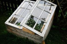 recycled windows on DIY mini garden