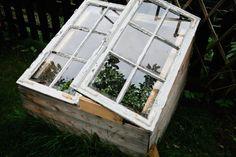 DIY mini garden