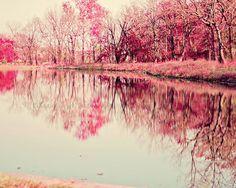 """Woodland Reflections"" - 16x20 Fine Art Photography Print by Katie Lloyd Photo on Etsy. $50.00"
