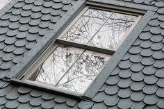 roof - tear-drops