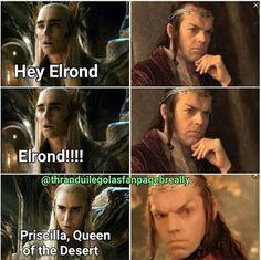 Elrond and Thranduil ...hahahah