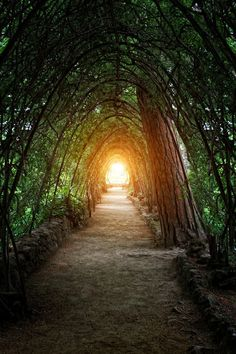Light at the End - Carlos Gotay at Park Güell, Barcelona, Spain Oh The Places You'll Go, Places To Travel, Places To Visit, Travel Destinations, Beautiful World, Beautiful Places, Amazing Places, Madrid, Magic Places