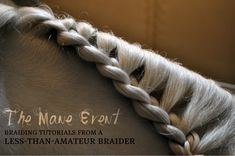Decorative Horse Braiding