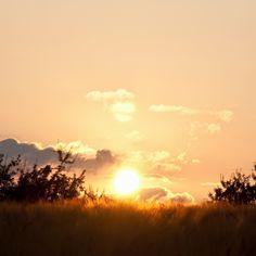 2048x2048 Wallpaper declínio, sol, disco, nuvens, horizonte, arbustos, campo