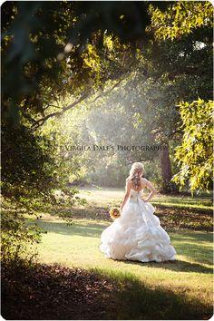 Bridal Natural Frame::