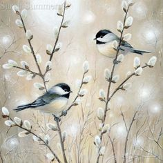 Chickadee Cushion Panel (front only) Tole Painting, Painting & Drawing, Watercolor Bird, Watercolor Paintings, Art Carte, Art Et Illustration, Illustrations, Bird Drawings, Bird Pictures