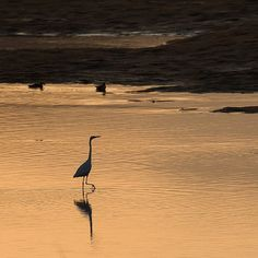 By canon_5dsr: #love  #selfie#셀스타그램#bs_world#selstagram#instagood#instacool#instamood#sunset_stream#데일리룩#일상#일몰#셀카#얼스타그램#ig_instagram#아이폰#ig_today#럽스타그램#백패킹#igshotz#beautiful#awesomeearth#igs_asia#follow #landscape#카메라#photos #landscape #contratahotel