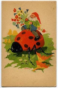 Gnome & Ladybug.