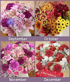 flowers every month gift