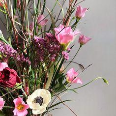 Aga Range, Happy Day, Happy Valentines Day, Interiors, Plants, Instagram, Decoration Home, Plant, Decor