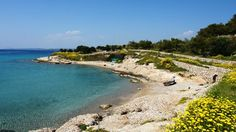 A beach in Spetses