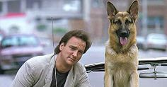 Played by a dog called Rango this furry companion did some outstanding police work and even took a bullet whilst on duty! Definitely worth a spot on this list! Well done, Cops Tv, Well Images, 1980s Films, Jerry Lee, Famous Dogs, Man And Dog, Childhood Memories, Movie Tv, Photo Galleries