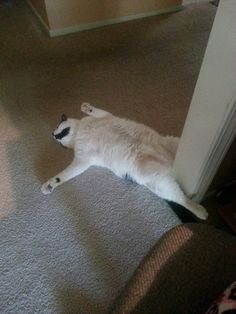 """What am I even doing with my life?"" 