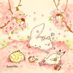 """こなつ on Instagram: """"ピンクの絨毯しきますよ〜"""""""