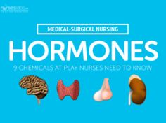 Hormones: 9 Chemicals at Play Nurses Need to Know