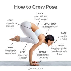 Your cheat sheet for flight!  Want more detailed deconstruction of crow pose and other arm balances?  Join Alex Crow for the FREE ##ArmBalanceChall... - DOYOUYOGA.com - Google+