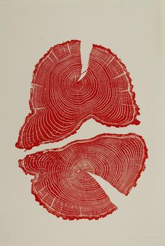 How do we overcome our obsession with growth? By Cherise Lily Nana. Art- Red Acorn tree cross section print by Bryan Nash Gill. Graphic Design Posters, Graphic Design Inspiration, Graphic Art, Gravure Illustration, Illustration Art, Plakat Design, Red Art, Art Inspo, Printmaking