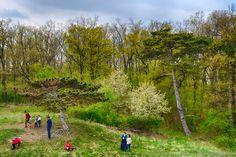 32. Eötvös Károly-túra egyik pillanata a Bika-tónál. 2016-04-16 (fotó: Somogyi Márk)