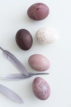 DIY Oster Deko: Ostereier ganz einfach mit Holundersaft färben.
