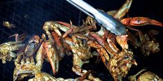 Barbecued Blue Crabs