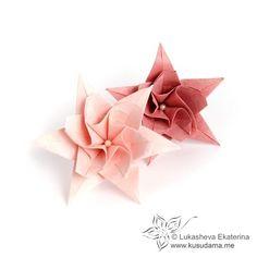 Kusudama Me! - Modular Origami Lilia unit