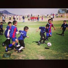 El fútbol infantil se practica en Aguascalientes más en www.agssports.com