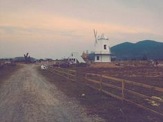 Cối xay gió ở Đà Nẵng: một nét Châu Âu tô điểm thành phố bên sông Hàn