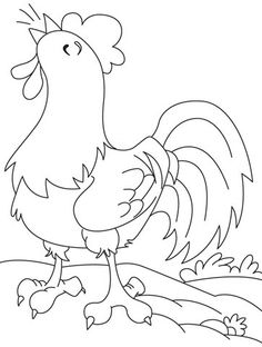 Wake-up time! Alarming cock coloring pages Animal Coloring Pages, Coloring Book Pages, Coloring Pages For Kids, Embroidery Stitches, Embroidery Patterns, Hand Embroidery, Free Applique Patterns, Chicken Quilt, Painting Templates