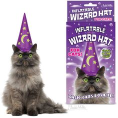 Inflatable Wizard Hat for cats - and other magical gear for writers