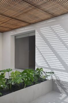 exterior perforated wood ceiling creates beautiful shadows