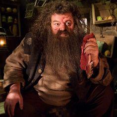 Rubeus Hagrid (portrayed by Robbie Coltrane) from Harry Potter Saga Harry Potter, Mundo Harry Potter, Harry Potter Characters, Harry Potter World, Harry Potter Hogwarts, Fictional Characters, Lord Voldemort, Eddie Redmayne, Hermione Granger