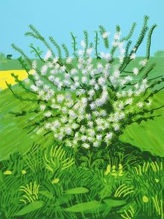 David Hockney - this is from his Arrival of Spring. I've seen it very recently and it is wonderful. This is one of my favourites.