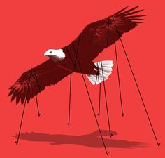 matt-chase-new-york-times-book-review-liberty-coercion_700