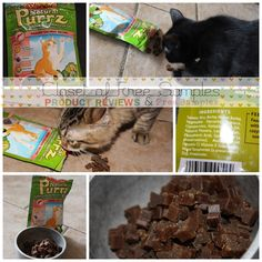 Grain Free Diets for Dogs and Cats + Review