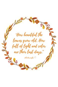 """""""How beautiful the leaves grow old. How full of light and color are their last days."""" – John Burroughs Five Fall Quotes You'll Fall In Love With - Geez, Gwen! Melisa M. melisaseki quotes """"How beautiful the lea Herbst Bucket List, Leaf Quotes, Color Quotes, Quotation Marks, Halloween Quotes, Halloween 2020, Fall Wallpaper, Happy Fall Y'all, Hello Autumn"""