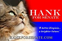 The Purrfect Candidate: A Rescue Cat Runs for Senate!
