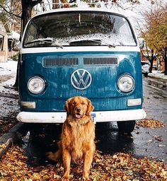 Best car & best friend by @hunter_lawrence Tag: #lifeofadventure #livefolktakeover by livefolk