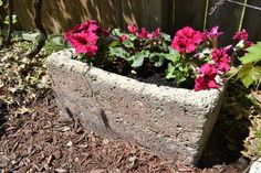 Making Hypertufa Troughs - Concrete containers for gardening that you can make yourself.