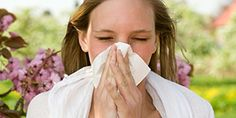 Allergies 101: A simple explanation of allergies & the immune system from an M.D.