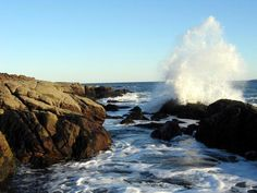 Seawall Campground is located in breathtaking Acadia National Park on the western side of Mount Desert Island on the Maine Coast.    The campground is approximately 18 miles from Bar Harbor. $20/night