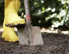 You're not stuck with sandy or clay soil. Three amendments can work wonders on improving all soil types: compost, coconut coir and greensand.
