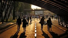 Reclaiming Paris's River Seine quayside