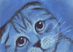 Monochromatic Animals | Art Brut Sessions
