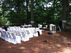 In de gemeente Leusden mag je midden in het bos op een afgelegen plek trouwen. De gasten van mijn Engels bruidspaar waren onder de indruk.