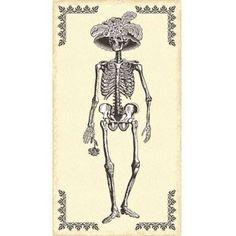 Mrs. Chillingsworth Halloween Fabric Panel Skeleton Quilt Fabric Premium Cotton #AndoverFabrics