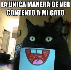 Imagenes de Humor con Animales - Parte 2