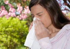 Consejos de jardinería para quien tiene alergia al polen o picadura de insectos