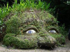 Heligan Gardens, Cornwall